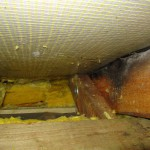 Luftdicht bauen - Luftleckagen führen im Dachstuhl häufig zu Schimmel